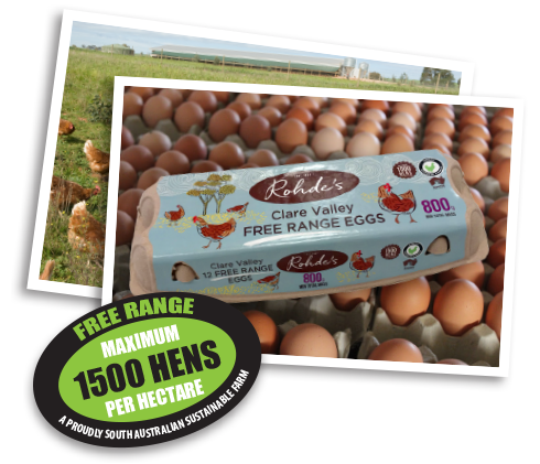 Rohdes Free Range Eggs Carton